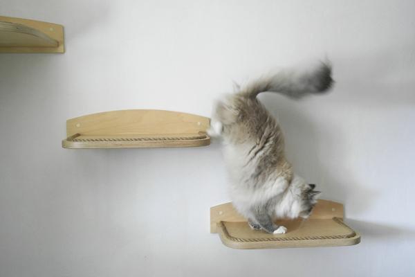 accessori per gatti in legno